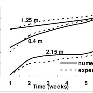 (PDF) On FVM Transport Phenomena Prediction in Porous