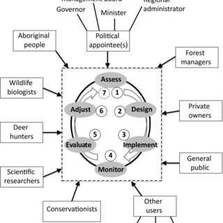 (PDF) Management of forest regeneration in boreal and