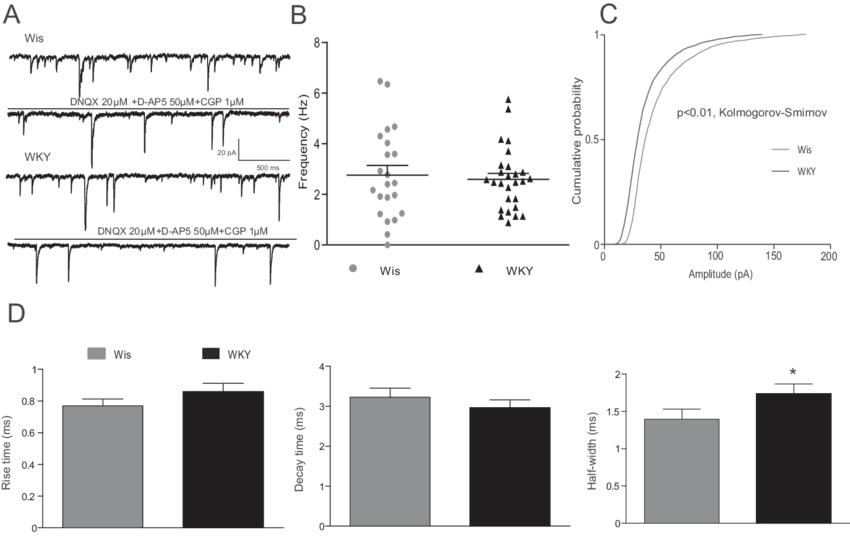 Spontaneous inhibitory input to locus coeruleus (LC