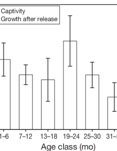 Variation in growth rates of headstarted iguanas captivity discrete also cyclura cornuta stejnegeri rh researchgate