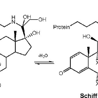 Design of fi rst- and second-generation cortienic acid