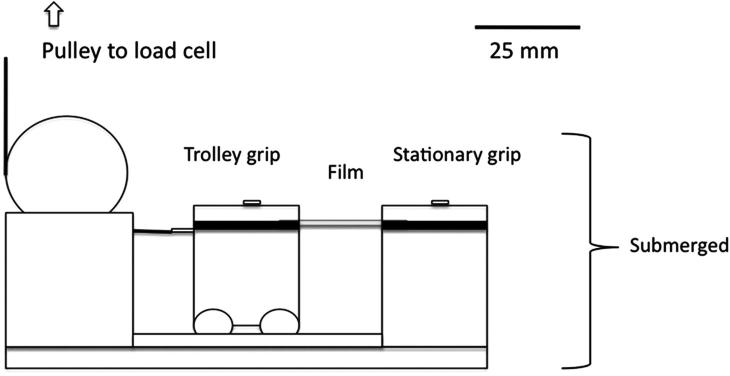 Tensile testing setup: the load cell is connected to the
