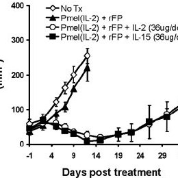 Exogenous IL-15 enhances the in vivo antitumor activity of