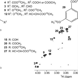 (PDF) Isotope-Filtered 4D NMR Spectroscopy for Structure