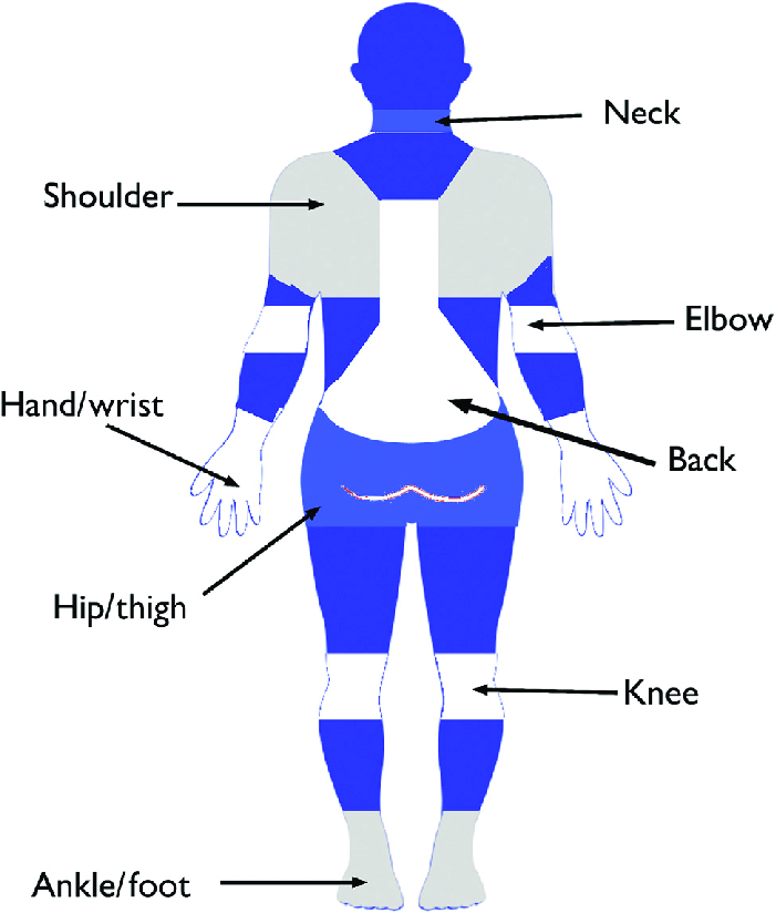 Use A Body Map Diagram To Note Symptoms Of Your Colleagues
