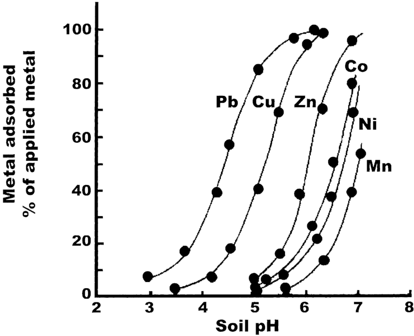 Adsorption of heavy metal cations on goethite. Metal