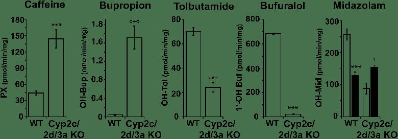 Cytochrome P450-mediated in vitro metabolism of probe