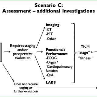 PICO questions relating to active treatment for MPM. R × 1