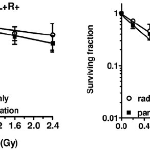Radiation dose-survival curves of mouse embryonic
