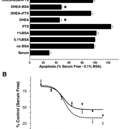 dhea bsa protected pc12 cells against serum deprivation induced apoptosis in a pertussis toxin ptx reversible manner cells were cultured either in  [ 850 x 1273 Pixel ]