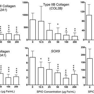 A) Lactate dehydrogenase viability assay. B) Caspase 3