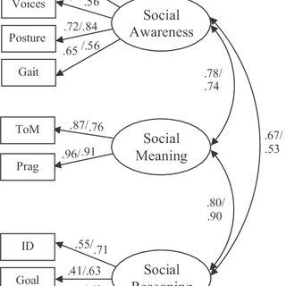(PDF) Web-Based Assessment of Children's Social-Emotional