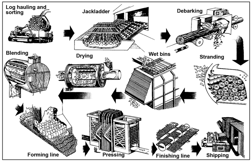 Schematic of OSB manufacturing process. (Courtesy of TECO