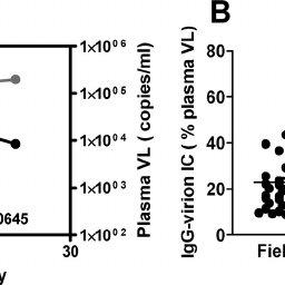 No correlation between HIV-1 plasma viral load and plasma