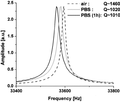 The frequency response of a 32.768 kHz tuning fork in PBS
