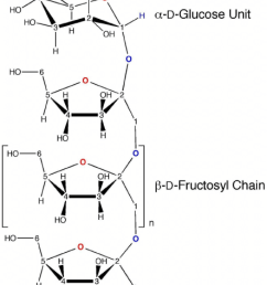 cyclic and acyclic forms of glucose and fructose [ 850 x 1138 Pixel ]