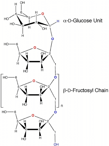 medium resolution of cyclic and acyclic forms of glucose and fructose
