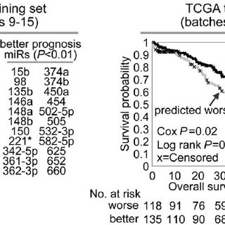 MiRNAs correlated with patient survival in ovarian cancer