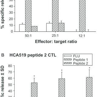 Intracellular flow cytometry of the HCA519/TPX2 TAPP found