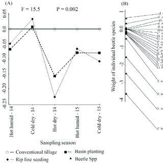 (PDF) Soil dwelling beetle community response to tillage