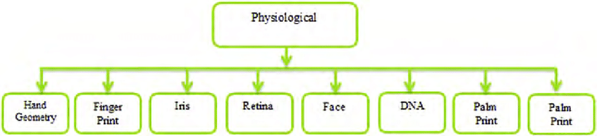 Types of physiological characteristics of human ...