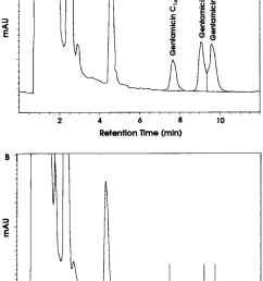 representative chromatograms of gentamicin from dog plasma 2 h after an download scientific diagram [ 850 x 1230 Pixel ]