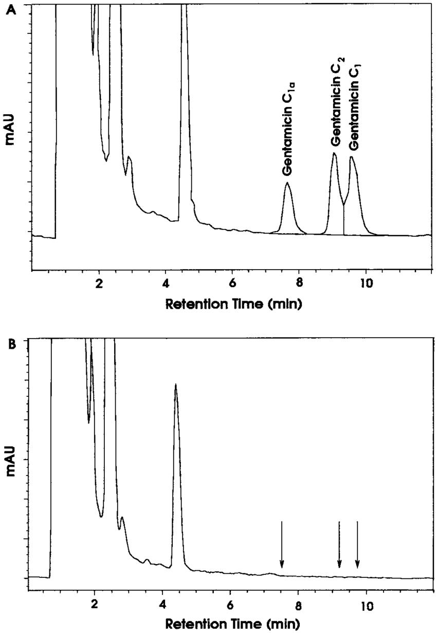 medium resolution of representative chromatograms of gentamicin from dog plasma 2 h after an download scientific diagram