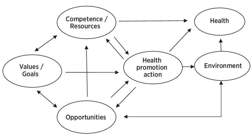 the multilevel health-promotion model (adapted from Rütten