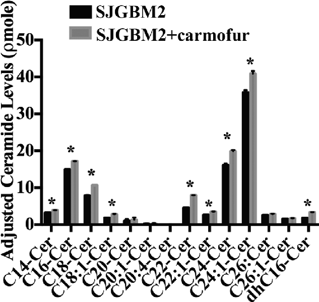 Treatment of SJGBM2 cells with carmofur resulted in