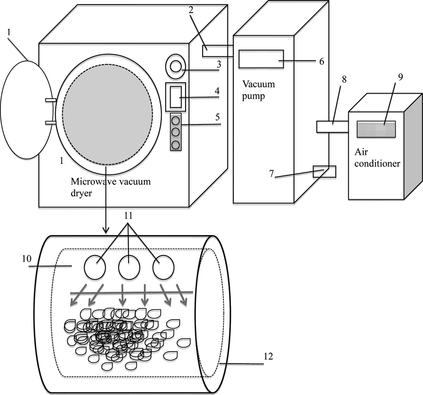 Schematic diagram of the commercial microwave vacuum dryer
