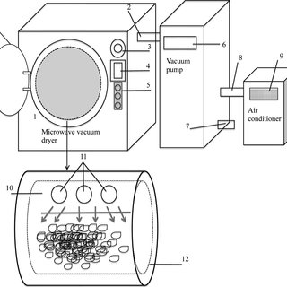 (PDF) Investigating the Commercial Microwave Vacuum Drying