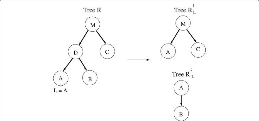 Example of lifting leaf node A (L in the algorithm) in
