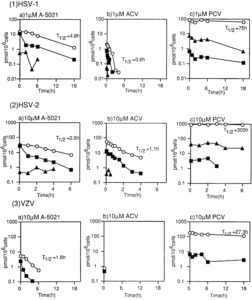medium resolution of intracellular stability of phosphate esters of nucleoside analogs in download scientific diagram