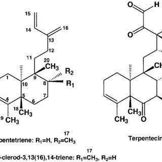 HPLC analysis of the products of S. lividans TK23