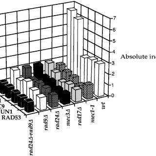 (PDF) RAD9 and RAD24 define two additive, interacting