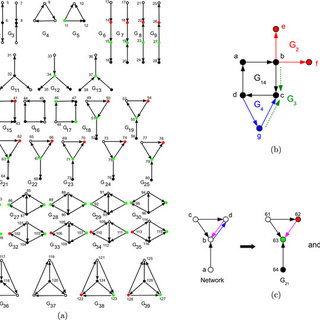 (PDF) Graphlet-based Characterization of Directed Networks