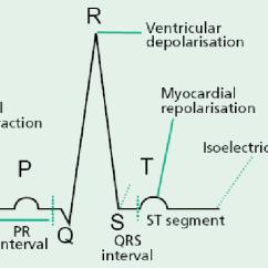 Cardiac Conduction System Diagram 12 Volt Dc Relay Wiring Pqrst Complex Wave [5]. | Download Scientific
