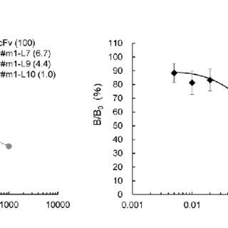 """(PDF) A Single-Step """"Breeding"""" Generated a Diagnostic Anti"""