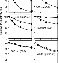 photodamage to psii in untreated thylakoid membranes by monochromatic light at various wavelengths thylakoid membranes [ 850 x 1266 Pixel ]
