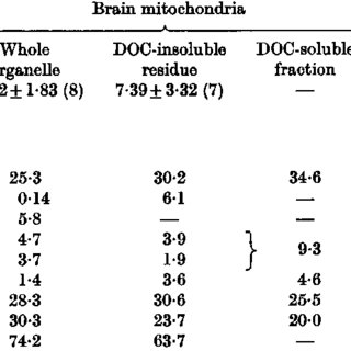 (PDF) Turnover of brain mitochondrial membrane lipids