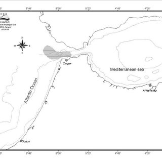 Fishing grounds (shaded area) of the Moroccan driftnet
