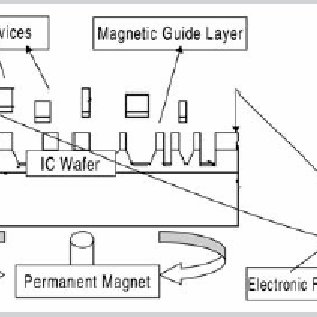 A schematic view of the magnetic field assisted assembly