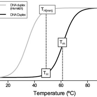 Predicted melting temperature (T m ) and respective