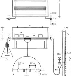 3 2 5 schematic diagram depicting the various components of the suction table apparatus  [ 850 x 1279 Pixel ]
