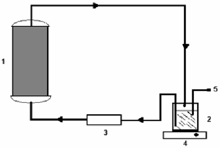 Batch recirculation system operated bioreactor: (1
