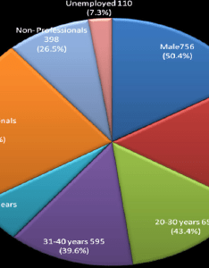 Pie chart representation of respendents demographic information also rh researchgate