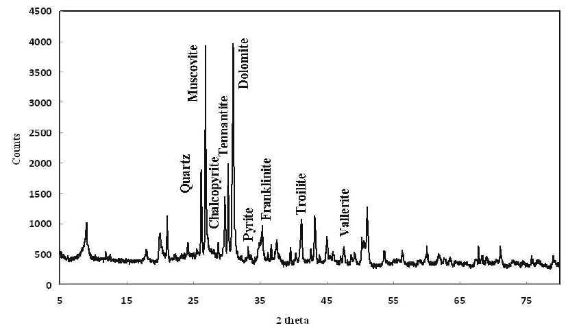 X-Ray Diffraction spectrum of BS before bioleaching