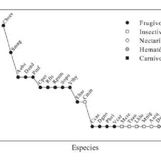 (PDF) Observaciones sobre Dispersión de Semillas por