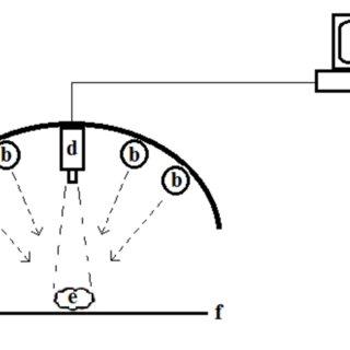 (PDF) PREDICTION OF AFLATOXIN CONTAMINATION ON DRIED FIG