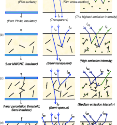 a cartoon representation of electrical optical and fluorescence percolation processes depending on the mwcnt concentration [ 850 x 1299 Pixel ]